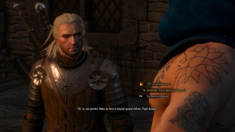 the witcher 3 soluce